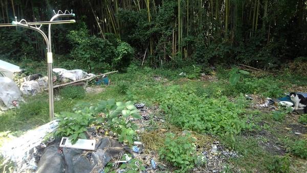 みやま市で草刈作業サムネイル