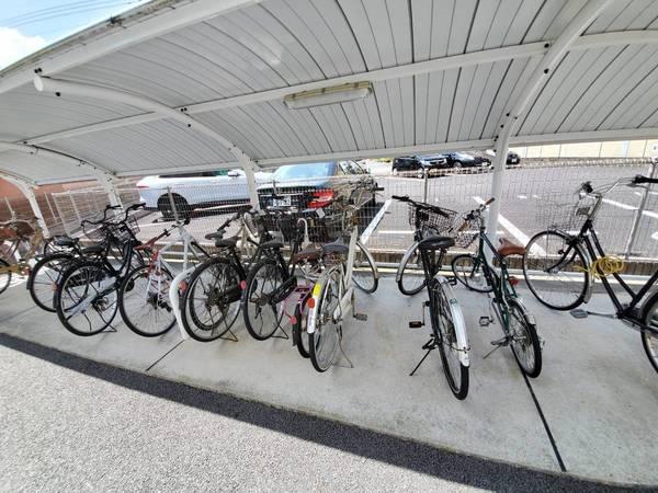 自転車撤去:不動産屋さんからのご依頼です:久留米市サムネイル