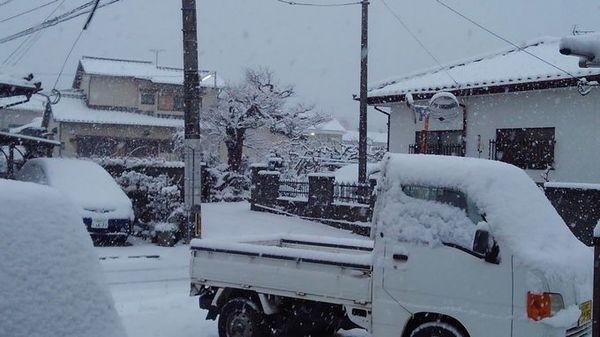 なんと久留米市にも大雪!!サムネイル