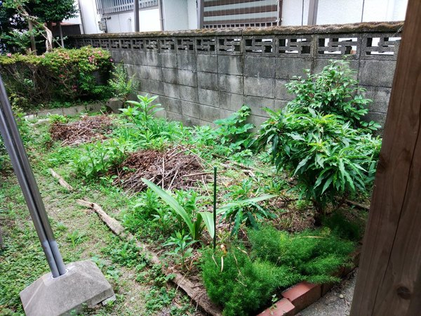 大牟田で剪定と草刈りサムネイル