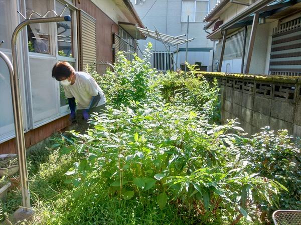 草取り:便利屋:久留米市サムネイル