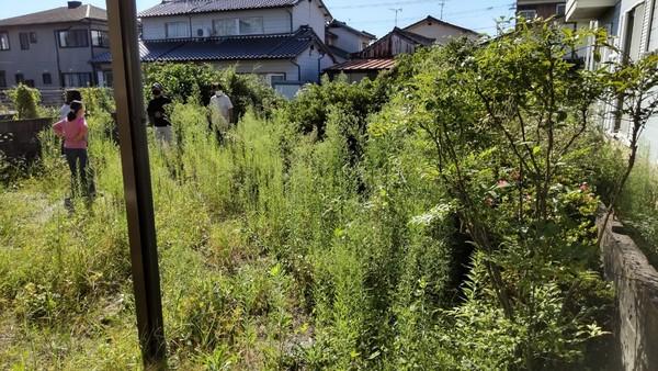 佐賀市で伐採・剪定・草取り・草刈り跡の除草剤散布のご依頼サムネイル